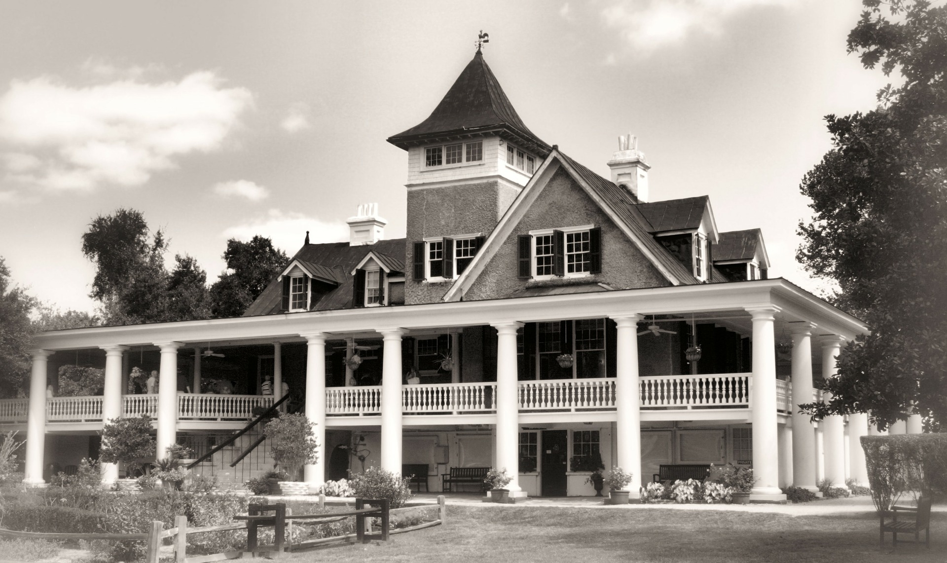 Why You Need to Visit Magnolia Plantation of Charleston SC